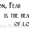 fear+is+the+heart+of+love